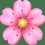 Bunga Sakura Apple