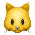 Wajah Kucing Apple