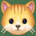Wajah Kucing Facebook