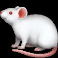 🐁 Tikus Apple