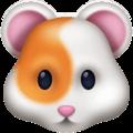 Hamster Facebook