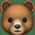 Beruang Facebook