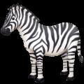 Zebra Facebook