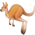 Kanguru Facebook