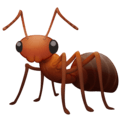 Semut Facebook