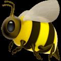 Lebah Madu Apple