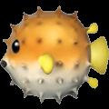 🐡 Ikan Buntal Apple