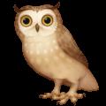 🦉 Burung Hantu Facebook