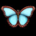 Kupu Kupu Emojipedia