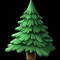 Pohon Cemara Apple