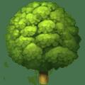 Pohon Gugur Apple