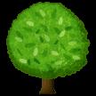 Pohon Gugur Samsung