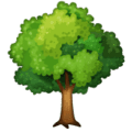 Pohon Gugur WhatsApp