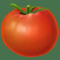 🍅 Tomat Apple