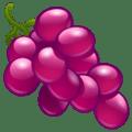 🍇 Anggur WhatsApp