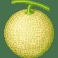 🍈 Melon Facebook