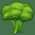 🥦 Brokoli WhatsApp