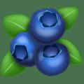  Blueberry WhatsApp