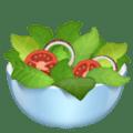 🥗 Salad Hijau WhatsApp