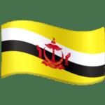🇧🇳 Bendera Brunei Facebook